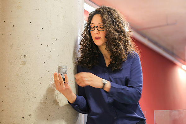 Concrete check-up: Fae Azhari develops diagnostics for critical infrastructure