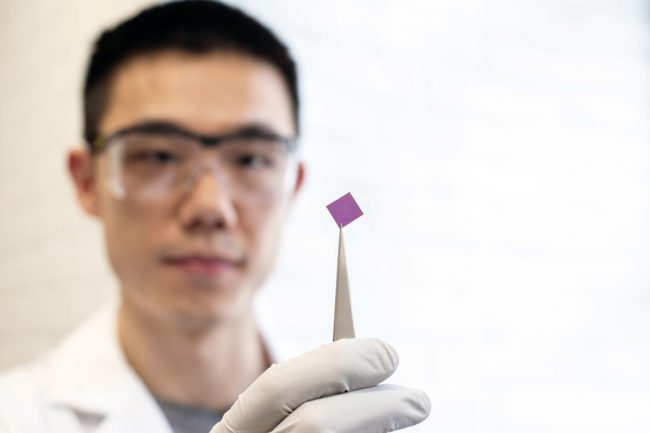 Man holds small purple square of graphene with tweezers